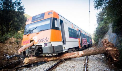 Un maquinista de Rodalies grave tras chocar el convoy contra un árbol