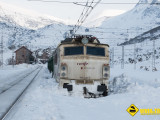 Tren mercancias nieve