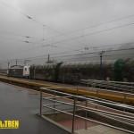 tren Araia