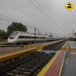 Tren ALVIA Araia