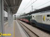 Tren Paraiso Infinito Gijon