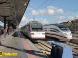Tren Avant y AVE