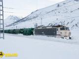Tren mercancias Busdongo