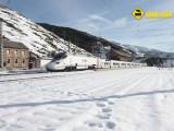 Tren Alvia Busdongo
